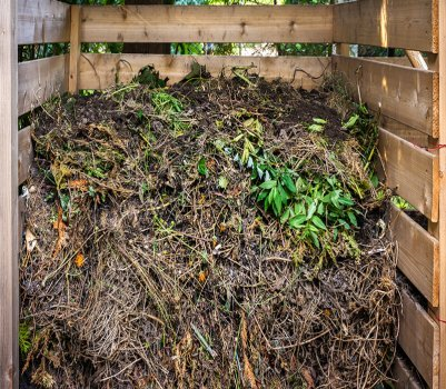 How to Dispose of Yard Waste I RollOffDumpsters com